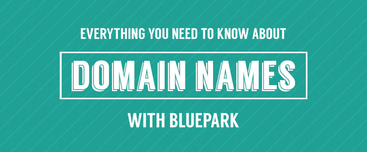 Everything you need to know about domain names with Bluepark